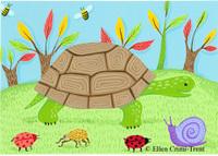 Turtlecopy